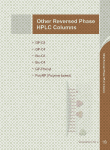 Other Reversed Phase HPLC Columns